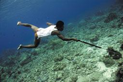 poco riguroso charla Deportes acuáticos
